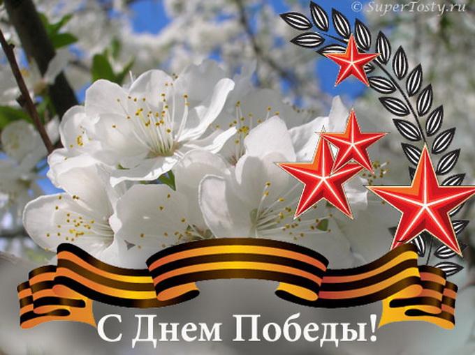 Сценарий праздника на 9 Мая - цветы георгиевская ленточка звёздочки